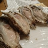 【生牡蠣食べ放題】札幌で安く食べれる「なごみや 一夜」に行きました!