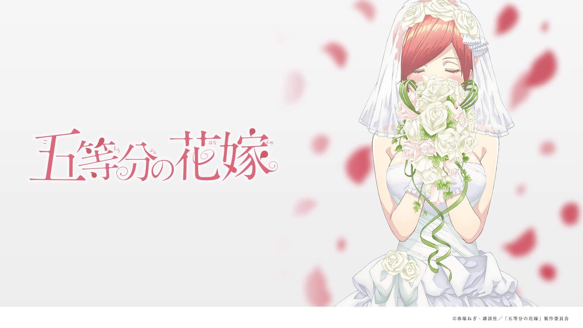 の 五 聖地 分 等 花嫁